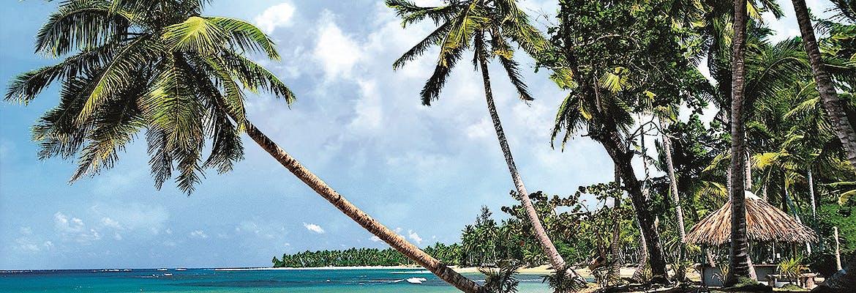 AIDA Oster-Spezial - Transreisen 2019 - AIDAperla - Von Karibik nach Teneriffa