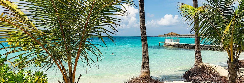 VARIO Exklusiv - AIDAblu - Mauritius, Seychellen & Madagaskar inkl. Flug
