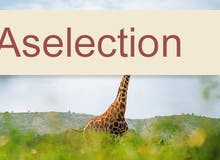 Transreise 2019/20 - AIDA Selection - AIDAmira - Von Kapstadt nach Mallorca inkl. Flug