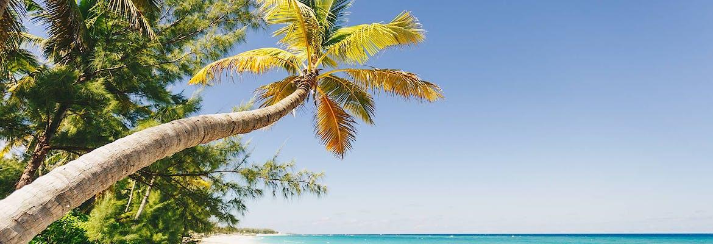 Winter 2021/22: AIDAluna - Karibik & Mittelamerika inkl. Flug