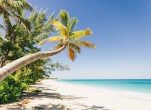 AIDA Sonderpreisangebot - AIDAdiva - Karibik & Mexiko