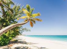 All Inclusive Winter 2021/22 - AIDAluna - Karibik & Mittelamerika