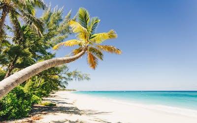 Karibik & Mittelamerika