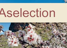 Stornokabine: AIDA Selection - AIDAcara - Von Mallorca nach Gran Canaria inkl. Flug