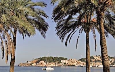 Mediterrane Schätze