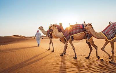 Von Abu Dhabi nach Mallorca