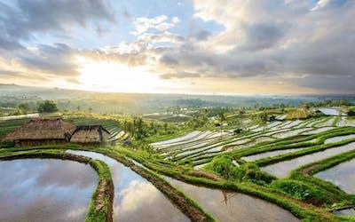 Asien mit AIDAbella & Thai Garden Resort