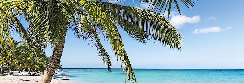 AIDA Pauschal: AIDAdiva Karibik & Mittelamerika inkl. Flug