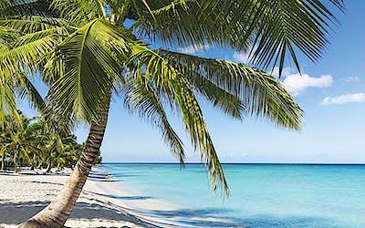 Karibik & Mittelamerika 1