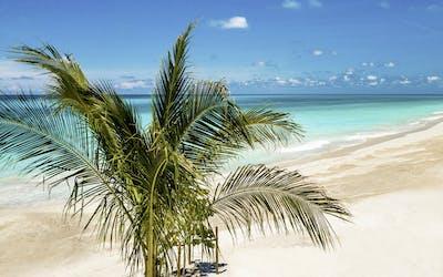 Karibik ab Port Canaveral