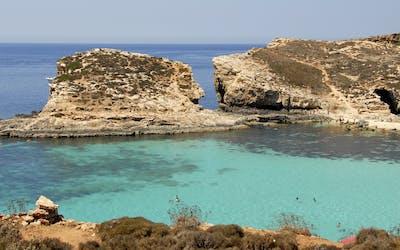 MSC Divina - Westliches Mittelmeer