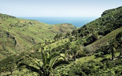 Mallorca bis Teneriffa/Gran Canaria