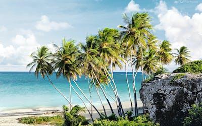 Karibische Inseln - Winter 2020/21