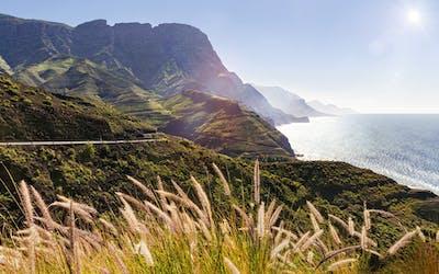 Neue Termine - Kanarische Insel