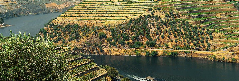 Sommer 2021 - A-ROSA Premium Alles Inklusive - Douro Erlebnis