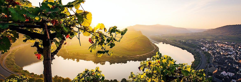 Empfehlung der Woche - A-ROSA 2021 Premium Alles Inklusive - Rhein Romantik mit Mosel
