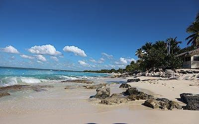 Karibische Träume - Winter 2020/21